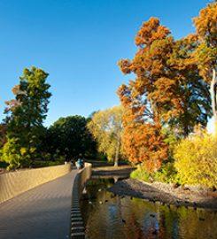 Kew Gardens Deals